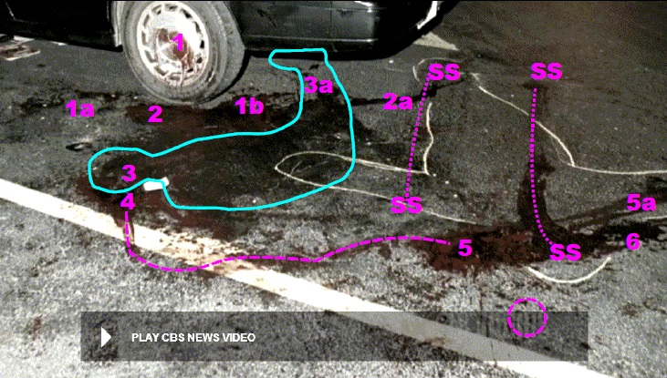 Similar view as above photo with added information. 1a and 1b are likely landing locations of both hands when Heitholt's head slammed into left rear wheel rim/cover. 2a denotes drainage trail of blood from blood pool at 2 where Heitholt head came to rest at end of bloody assault. 3a – locale of Heitholt legs and feet after strangulation. Note how the victim's legs wiped through the trail of blood at 2a. 4 – approximate location of Heitholt head after being turned over by sports writers. Dashed line from 4 to 5 – denotes path of movement of Heitholt's head during relocation for resuscitation. 5a – dual trail of blood from head position during resuscitation. 6 – rotated position of Heitholt head and also another dual trail of blood. SS and dashed connecting lines – smearing and scrubbing markings made by an emergency scoop stretcher during process of removing body from scene. Dashed circle – approximately location of severed belt buckle. Modified still from CBS News video.