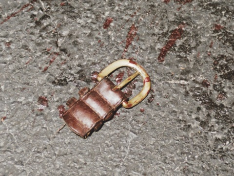 Victim's severed belt buckle as found on pavement about one foot north of final location of bloody head of victim. CBS News photo. From the pavement markings and after accounting for the post murder markings, we can discern a standing struggle, a down on the pavement struggle, an apparent headfirst fall into the left rear wheel, and a strangulation struggle. The markings on the vehicle and the victim will be analyzed before putting together the likely sequence of these and other activities.